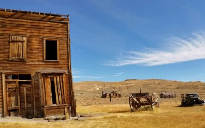 Taming the IoT Wild Wild West with Enterprise Architecture